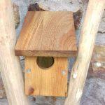 portes ouvertes nichoirs oiseaux oiseaux oiseaux